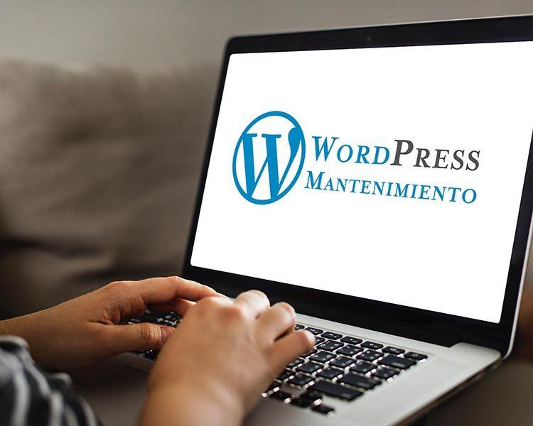 Diseño-paginas-web-en-Zaragoza-Mantenimiento-Web-Wordpress